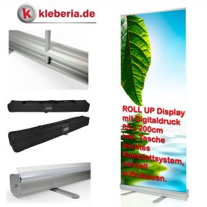 Rollup-Display